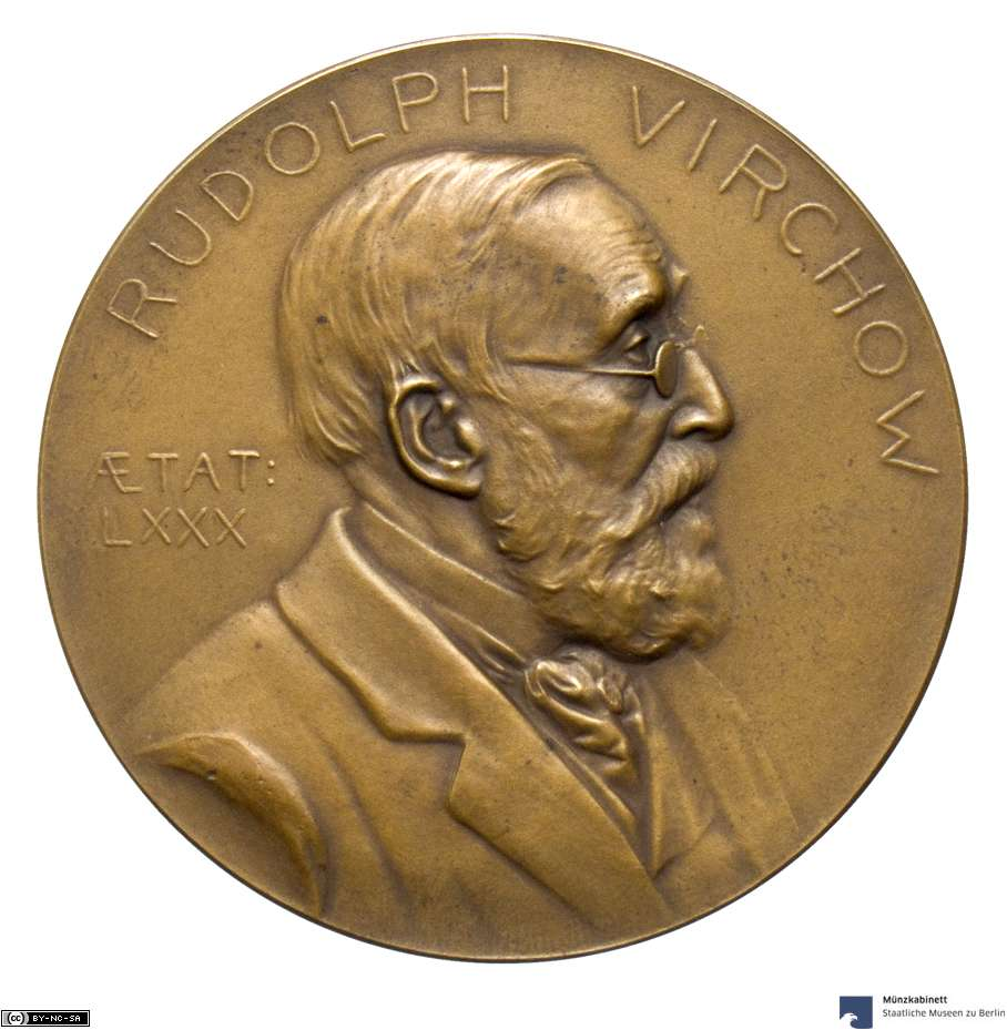 Placht, Richard: Rudolf Virchow